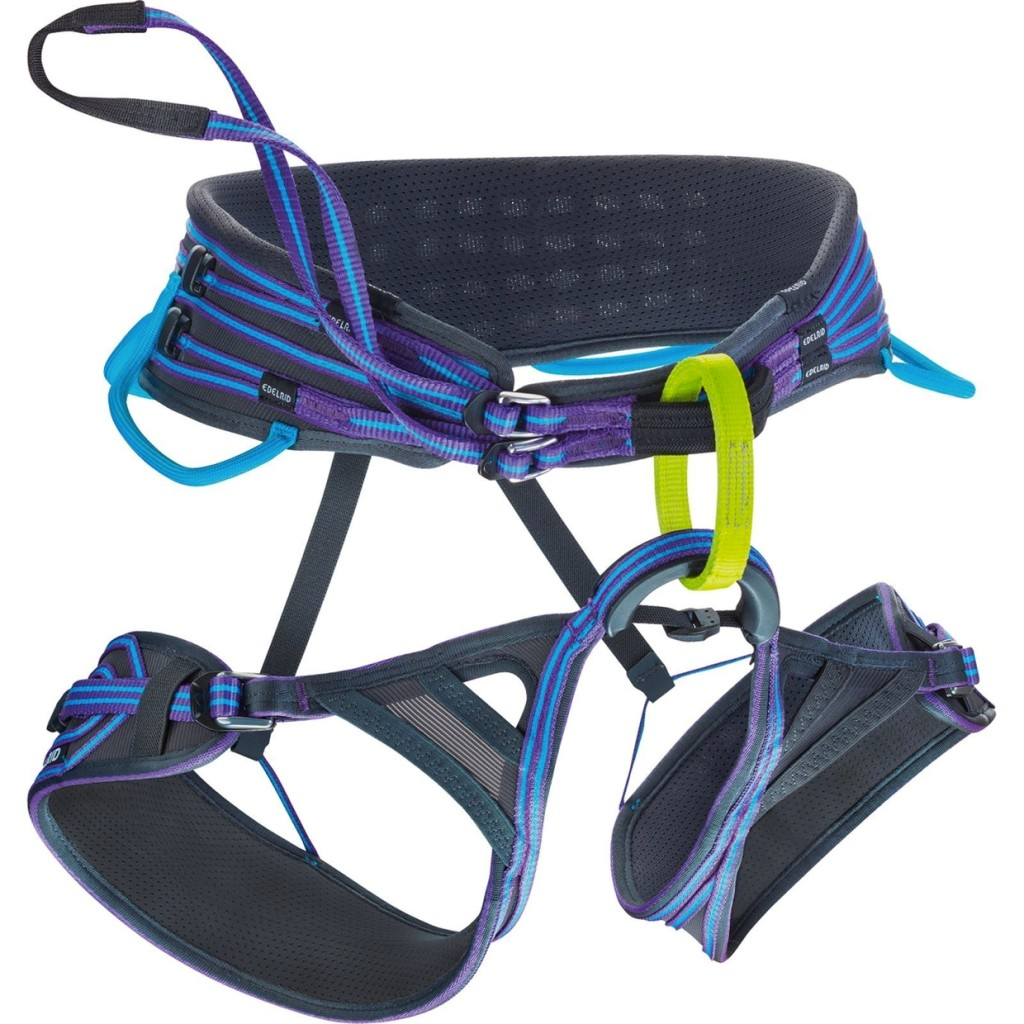 the harness Harness definition, the combination of straps, bands, and other parts forming the working gear of a draft animal see more.