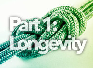 When to Retire your Rope: Longevity