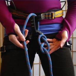 harness tie in