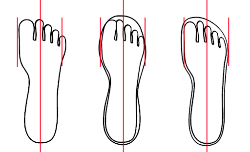 Illustration of Shoe Fitment and Shape